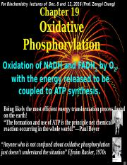 chapter 19 Oxidative Phosphorylation (Dec. 8, 12, 2016)