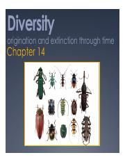 Spring 2016 Lecture 26 Macro 3_Diversity, Speciation and Extinction.pdf