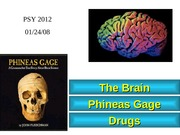 James_Lecture_5_neuroscience_lecture_2___student_version
