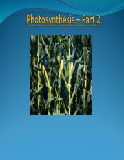 Lecture 9 Photosynthesis -II Chapter 8