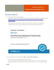 Cui Xiao_MarketingMasterySubmissionForm.docx