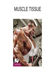 muscle_tissue.pptx