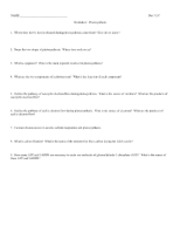 311C Photosynthesis_worksheet