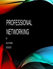 GS2745 Module 4 Lab PROFESSIONAL NETWORKING