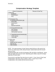 Compensation Strategy Template_revised.doc