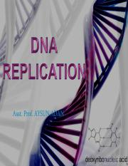 AA DNA Replication.pdf