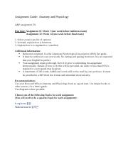 AP_assignment guide.docx