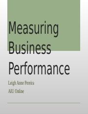 Measuring Business Performance IP2