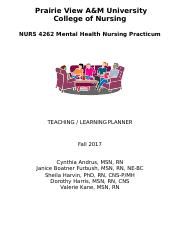 NURS 4262 Clinical Packet Fall 2017.docx