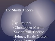 The Shultz Theory