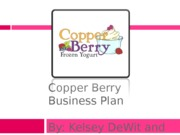 Copper Berry Business Plan