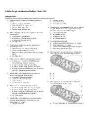 Cellular Respiration Practice Multiple Choice NEL.docx