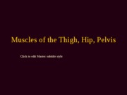 muscles of thigh, hip, pelvis