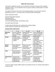 SBAD 350 Group Project Rubric
