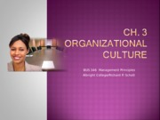BUS 346-ch3-class presentation-org culture only-0813