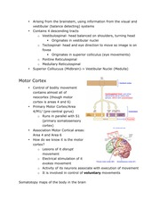 Neuro3Notes3-page5