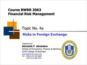 BWRR3063_Topic_04a_Risks_in_Foreign_Exchange