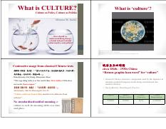 What is Culture Why Culture 2016.pdf