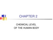 2 -CHEMICAL LEVEL