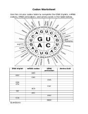 Codon Worksheet - Codon Worksheet Use the circular codon ...
