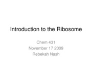 14.Introduction to the Ribosome - Nov17