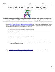 energy_ecosystem_webquest-1.docx