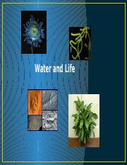 Lecture+3+Water+and+Life