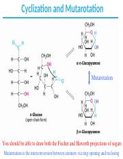 CH7_Carbohydrates_Part2