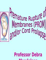 High Risk IV - PROM or Cord Prolapse- prof m.ppt