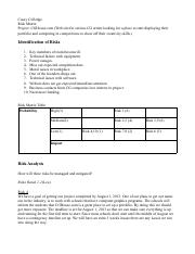 ccolledge_riskmatrix.pdf