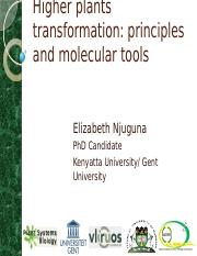 Higher plants transformation_Principles and Molecular tools PPT.pptx