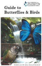 Butterfly Conservatory Information