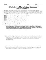 worksheet monohybrid crosses 2009 - Name Date Period Worksheet ...
