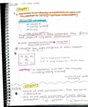 mrkt339 chapter 1 and 2 class notes