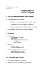 Topic6-Photosynthesis