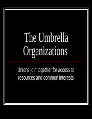 The Umbrella Organizations