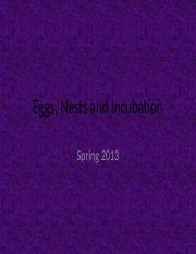 Eggs, Nests and Incubation.pptx