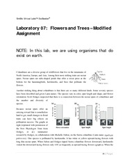 Lab+Master+07+Flower+Tree+Exercises+01-03+Modified+Fall+2013-10-22