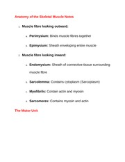 Anatomy of the Skeletal Muscle Notes