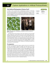 5.5 Explore Applications in Artificial Photosynthesis