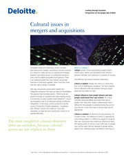 us_consulting_CulturalIssuesinMA_010710