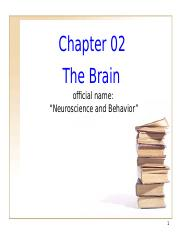 The Brain Ch 02 PowerPoint  l-o-n-g version.ppt