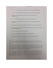 NSCI 4023- Glycosidic worksheet