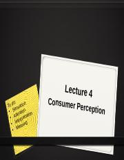Lecture 4 Perception .pptx