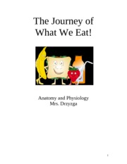 Anatomy- The Journey of What We Eat Project