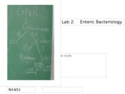 Lab2_EntericBacteriology2