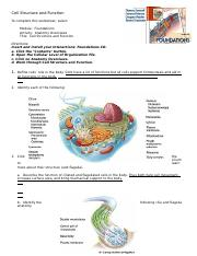 cell structure and function 3 - Copy.doc