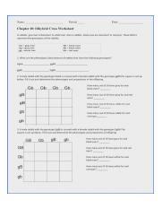 dihybrid_cross_ws_key.pdf - Name K6 2 PeriodDate ScoreWZSpts Chapter ...