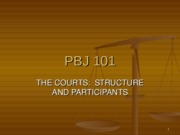 Chapter_9_The_Courts_Structure_and_Parti