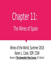 Chapter 11 Spain 071116